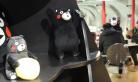 北京:最大熊本熊咖啡厅开张 粉丝排队捧场