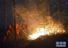 树林里突发大火 淄博一邮递员迎火而上英勇救火