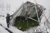 低温雨雪天气造成湖北64万余人受灾