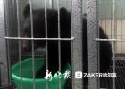 野味出售点救出亚洲黑熊 将送至亚布力熊猫馆