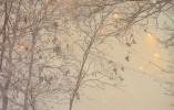 沈阳部分学校因大雪路滑3月1日停课一天