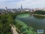 济南未来3天继续回暖 4月1日最高气温29℃