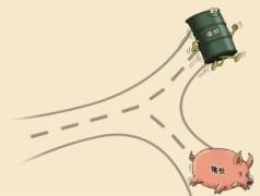原油向左 生猪向右