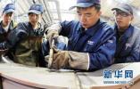 """河北将""""一对一""""帮扶两千家科技型中小企业"""