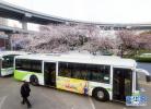 秦皇岛端午开通旅游专线 满足市民游客出行需求