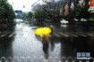 数据出来了,青岛这场雨下最大的地方是这座岛!