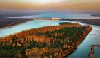 洛阳黄河湿地:苇密水清鱼鸟戏