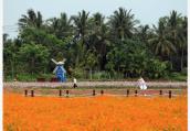 五一假期将现出游热 预计全国将有1.5亿人次旅游
