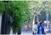 本周南京市气温先升后降,明晚小雨来扰