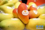 水果丰收价格稳