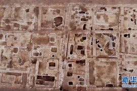 安徽发现大面积酿酒作坊遗址