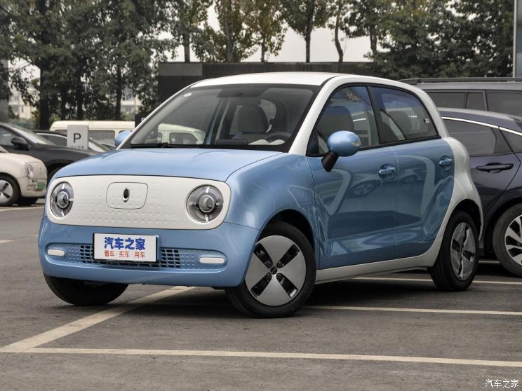 长城汽车 欧拉R1 2019款 301km 标准版