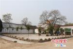 """河南郏县:人居环境整治描绘""""乡村美卷"""""""