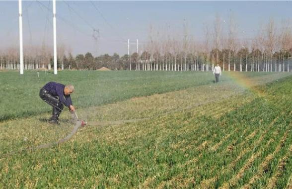 河南宝丰:初春时节灌溉忙