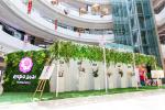世园会花房巡展扬州站 打造全新网红打卡热点