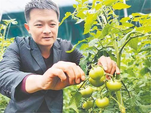 河南尉氏:产业扶贫结硕果