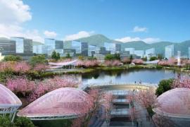 杭州将添两处观桃赏桃胜地