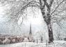 大年初一河南大部将迎中到大雪 下周温度跳水6℃~8℃