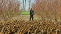 河南夏邑:鼓励贫困农户发展饲养业