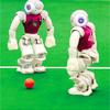机器人世界杯