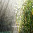 济南潍坊威海检出酸雨
