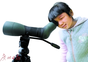 """第36届""""爱鸟周""""活动开锣 5座""""小鸟天堂""""有得睇"""