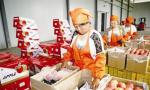 河北省今年力争建成出口食品农产品示范区100家