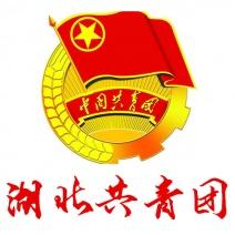 中国共产主义青年团湖北省委员会