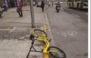 骑共享单车发生事故谁该担责? 南京拟规定企业需提供保险