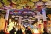 厦门首届大型室内艺术灯会展出 元宵到园博苑看花灯吧