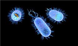 遏制细菌耐药国家行动计划发布
