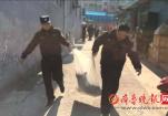 济南天桥区咬人恶犬被捕杀 小区保安合力围捕