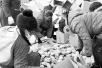 河南莲藕丰产不丰收 两元一斤仍然无人问津