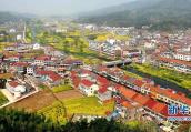 驻马店市正阳县:为乡村振兴铺好路