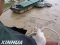 山东省中小河流水文监测系统建设项目通过竣工验收