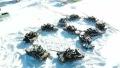 战斗民族真会玩!俄军妇女节开坦克比心直升机送花