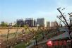 驻马店市西平县将举办首届海棠文化旅游节