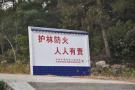 清明安全祭祖 沈阳消防发布七大安全提示