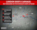 90分钟连捅6人 目击者:伦敦越来越像战区