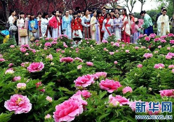 北京赛车pk10微信玩:洛阳:赏花遇价格问题 您可现场投诉