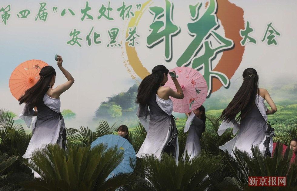 万两重花卷茶亮相八大处茶文化节