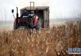 麦收临近 平顶山市今夏秸秆禁烧已全面启动