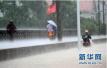 一夜暴雨杭州多地积水 消防连续出警救助20次!