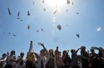 转公后的浙大城院省内一段线录取比例猛升至65%