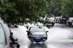 """台风蓝色预警:""""温比亚""""早晨5点位于河南固始境内"""