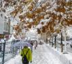乌鲁木齐迎暴雪 一夜入冬
