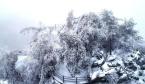 雪中老君山:水墨画卷 玲珑世界