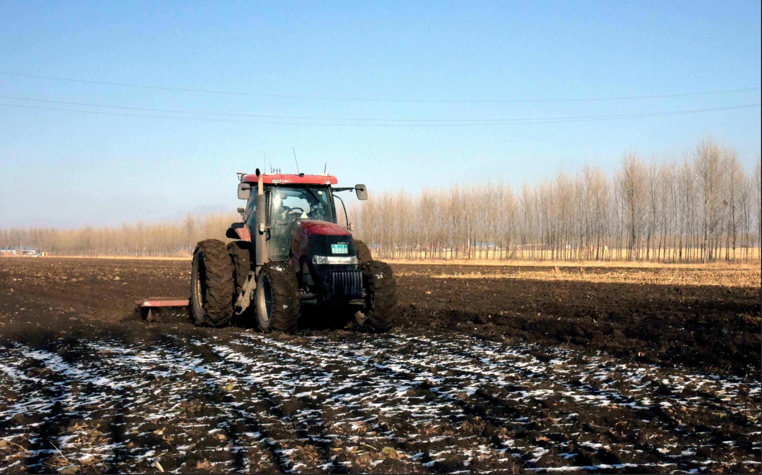 聚焦东北黑土地:数量减少质量下降 保护刻不容缓