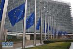 """欧盟反对美国""""激活""""制裁古巴法律条款 指美国违法"""