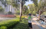 小白蛾子来袭  漯河市城管局园林中心积极迎战遏制其蔓延